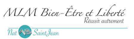Nat SaintJean Logo